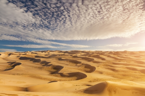 See the Sahara in Tunisia