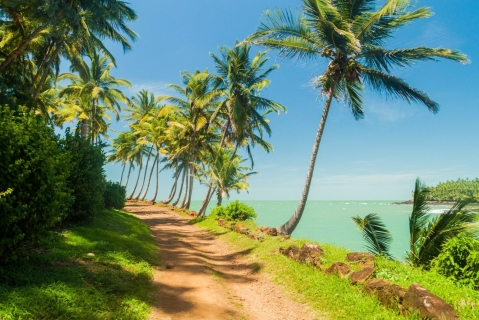 Discover French Guiana
