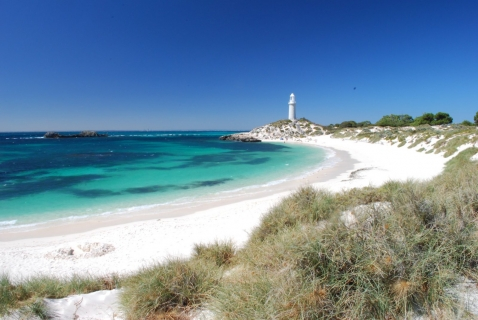 Discover Rottnest island