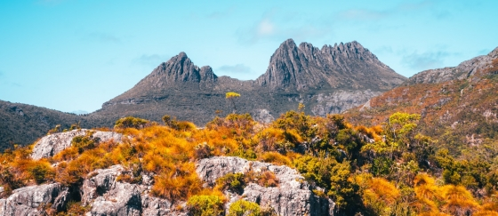 One of the highlights of Tasmania