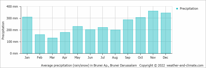 Average precipitation (rain/snow) in Brunei Ap., Brunei Darussalam   Copyright © 2017 www.weather-and-climate.com