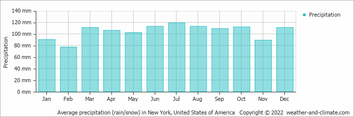 Average precipitation (rain/snow) in New York, United States of America   Copyright © 2013 www.weather-and-climate.com