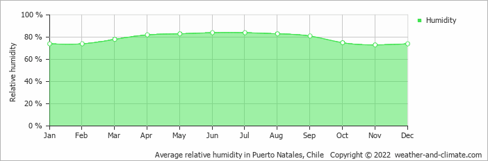 Average relative humidity in Lago Argentino, Argentina   Copyright © 2019 www.weather-and-climate.com